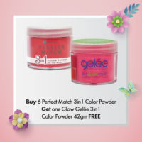 Buy 6 Perfect Match 3in1 Color Powder, Get 1 Glow Gelée 3in1 Color Powder 42gm FREE
